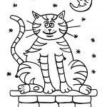 Gatos para colorear Dibujos