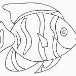 Pintar un pez