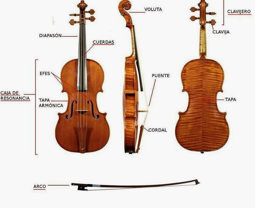 accesorios para el violin