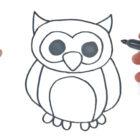 Como dibujar un Buho
