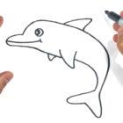 Como dibujar un delfin