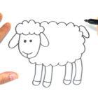 Como dibujar una Oveja