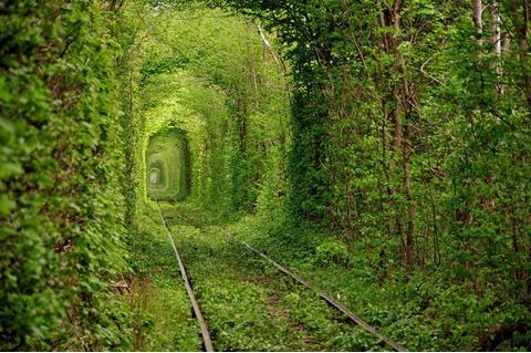 Tunel del amor Ucrania