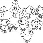 Dibujo Gallita y Pollitos para colorear